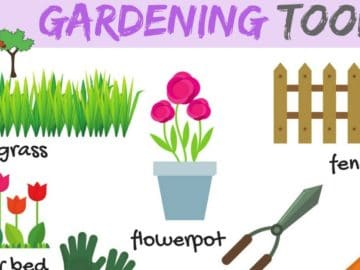 Learn Gardening Tools Vocabulary in English 16