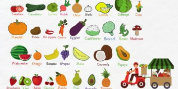 [Video] Names of Fruits and Vegetables 9