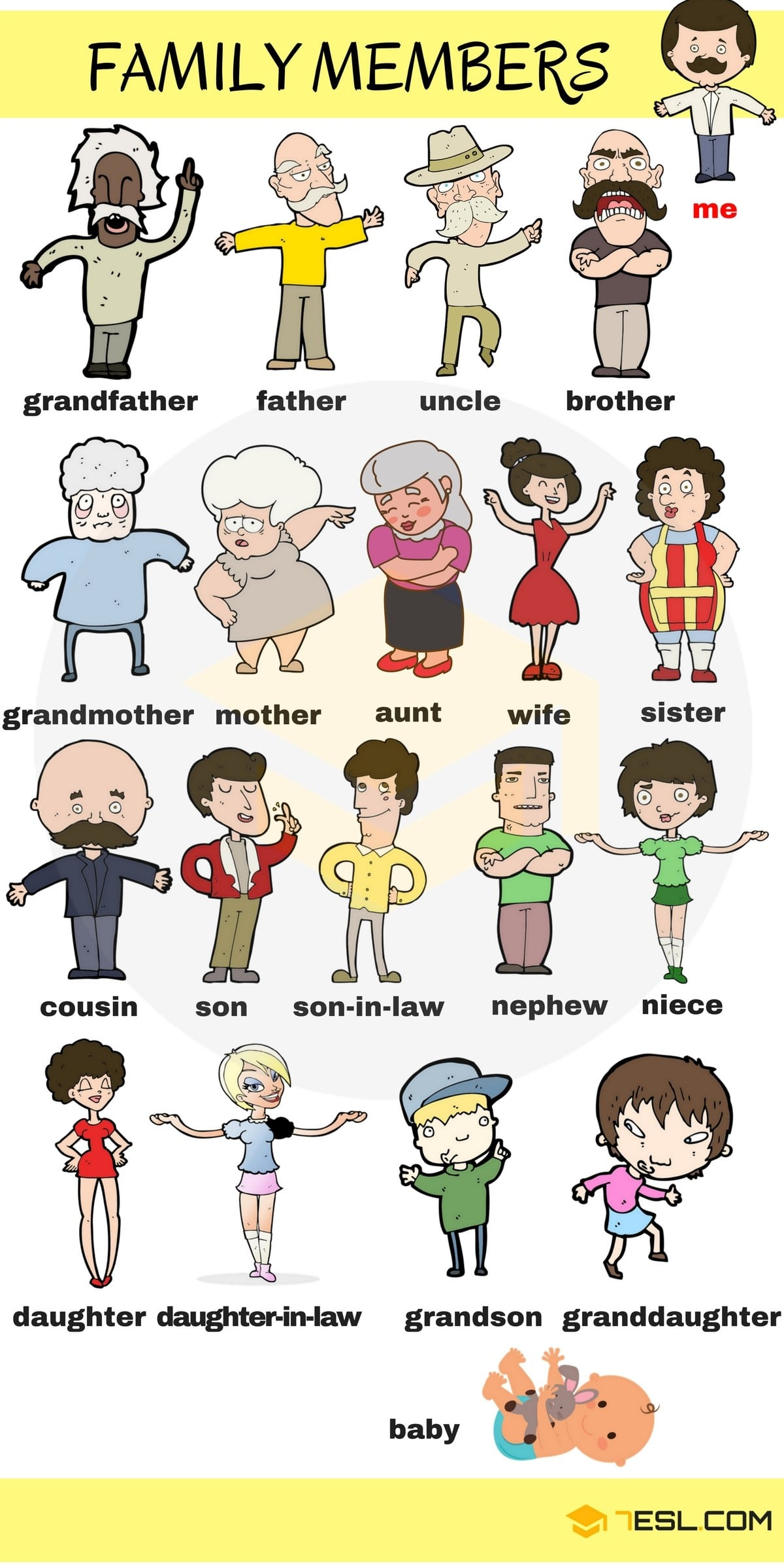 Members of the Family Vocabulary in English 1