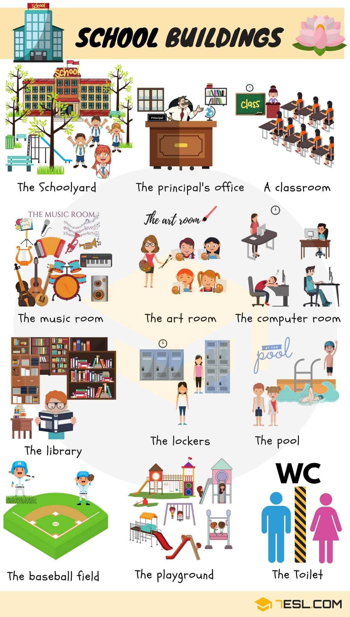 School Vocabulary in English 15