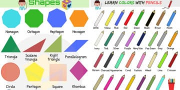 Shapes and Colors Vocabulary in English 8