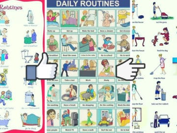 Daily Routines and Household Chores Vocabulary in English 16