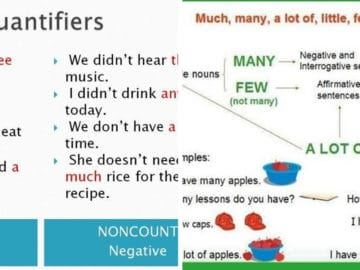Quantifiers - Much, Many, Some, Any, Few, Little... 14