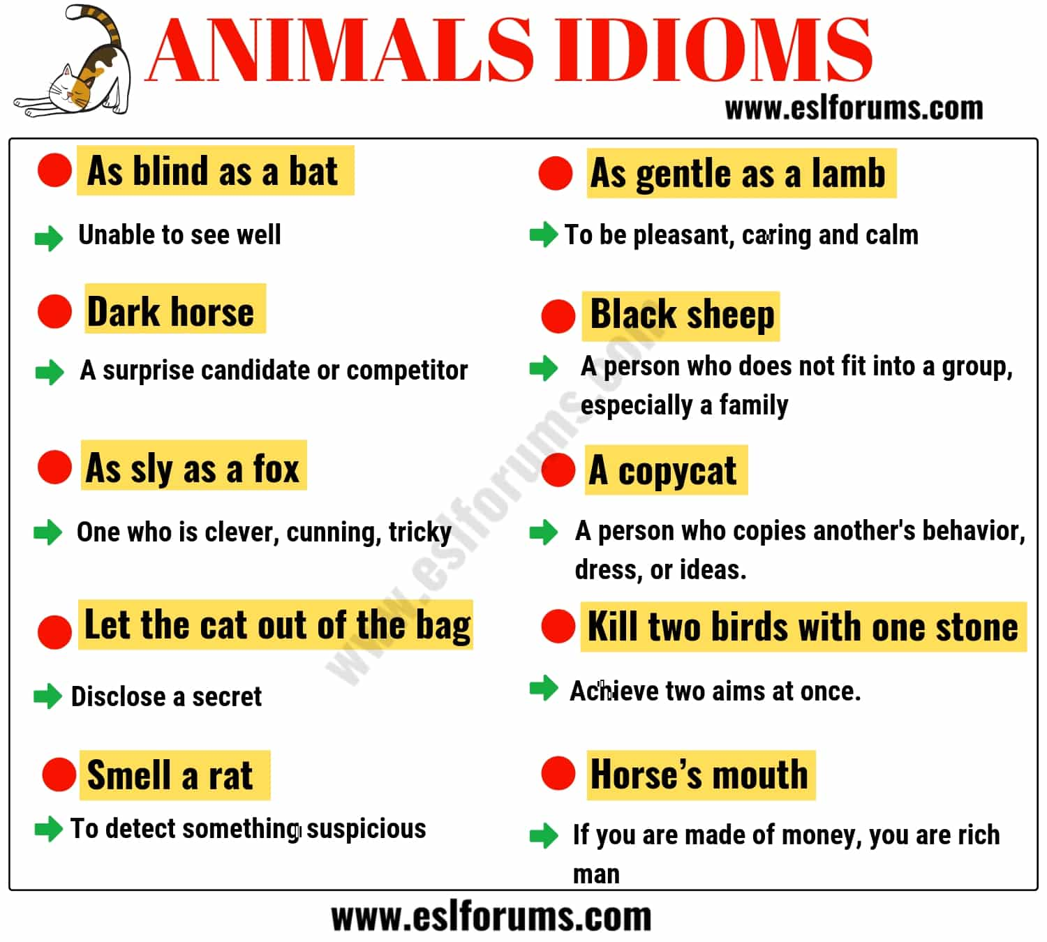 English Idioms: Learn English Idioms with Topics - ESLBuzz ...